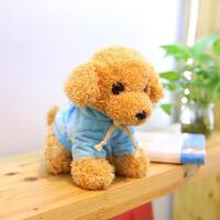 仿真泰迪狗毛绒玩具公仔毛毛狗布娃娃女孩泰迪卫衣狗儿童生日礼物