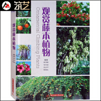 观赏藤本植物 垂直绿化 墙上花园 墙体花园 景观植物应用介绍与设计案例赏析 书籍