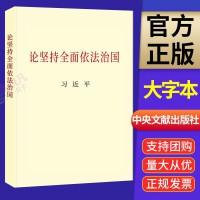 论坚持全面依法治国(大字本)2020新版 中央文献出版社
