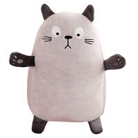 猫咪抱枕公仔毛绒玩具龙猫睡觉抱布娃娃玩偶送女生生日礼物圣诞节抖音 浅灰色