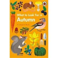 预售 What to Look For in Autumn 预计九月发货