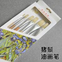 金之枫画笔 夏之颂 原生态猪鬃油画笔 10510 油画笔6支装美术用品