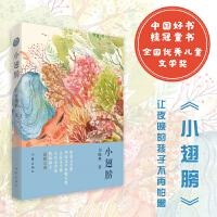 小翅膀 (2018中国童书榜年度童书) 作者签名版