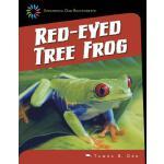 【预订】Red-Eyed Tree Frog