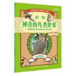 神奇的鸟类世界 森林林地卷 9787537694643