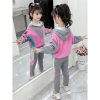 2019秋季新款童装女童套装儿童韩版洋气运动套装两件套
