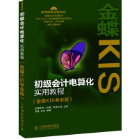 初级会计电算化实用教程(金蝶KIS专业版)