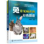 畜禽常见病诊治彩色图谱丛书--兔常见病诊治彩色图谱