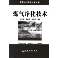 煤气净化技术/煤清洁转化新技术丛书