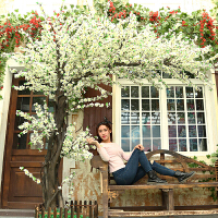 【新品】假树仿真树大型室内装饰植物仿真樱花树仿真桃树许愿树造景桃花树