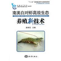 南美白对虾高效生态养殖新技术