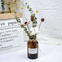 情人草木棉花尤加利叶干花玻璃花瓶ins北欧风永生花客厅装饰摆件 干花包