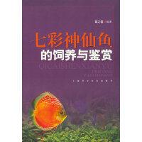 七彩神仙鱼的饲养与鉴赏