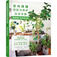室内绿植搭配与养护完全手册 用绿植打造花园家居 化学工业出版社