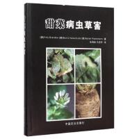 【二手书9成新】 甜菜病虫草害(精) [德] 布莱德,霍尔特舒尔德,雷克曼 9787109209947