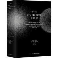 大图景 论生命的起源、意义和宇宙本身 湖南科学技术出版社