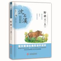 百年文学梦经典作品集:野猪王(上)
