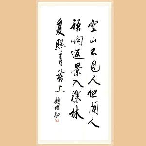 著名书法家 赵朴初(书法)ZH531附作品集+合影