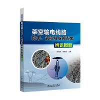 架空输电线路隐患、缺陷及故障表象辨识图册