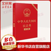 中华人民共和国民法典 含草案说明 大字版 中国法制出版社