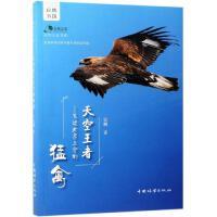 天空王者:飞过北京上空的猛禽/自然之友书系 中国林业出版社