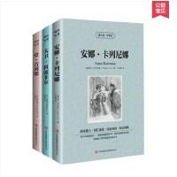 安娜・卡列尼娜 大卫科波菲尔 堂吉诃德 世界文学名著全三册 中英文双语图书籍 英汉对照畅销书长篇小说