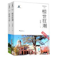 硅谷启示录:惊世狂潮+怦然心动(全2册)