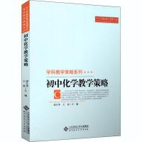初中化学教学策略 北京师范大学出版社