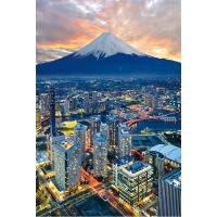 益智玩具减压拼图有名景点日本富士山木质拼图1000片进口材质儿童益智玩具减压神器