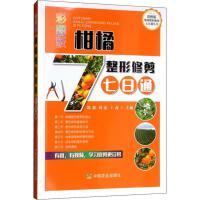 彩图版柑橘整形修剪七日通 中国农业出版社