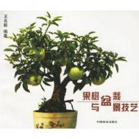 【二手旧书九成新】果树盆栽与盆景技艺 王兆毅9787503813139