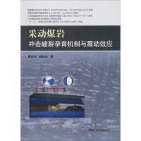 采动煤岩冲击破裂孕育机制与震动效应 中国矿业大学出版社