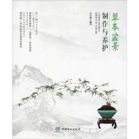 草本盆景制作与养护 中国林业出版社