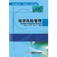 信贷风险管理(电子书)