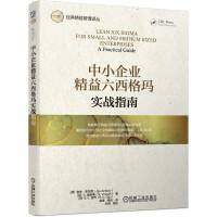 中小企业精益六西格玛实战指南 六西格玛管理法 企业管理案例教材书籍 六西格玛黑带运营培训 精益生产常用应用工具书