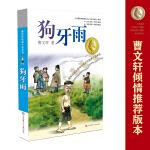 曹文轩纯美小说系列*狗牙雨