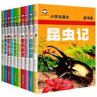 全套10册国外童话故事书昆虫记 绿野仙踪 爱丽丝梦游仙境 爱的教育 小鹿 木偶 海底 柳林 水孩子 草原上的小木屋一二