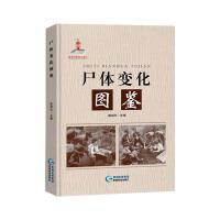 尸体变化图鉴 贵州科技出版社