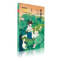 新中国成立70周年儿童文学经典作品集 野葡萄