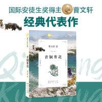 曹文轩文集-青铜葵花