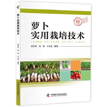 萝卜实用栽培技术 科普三农 强农惠农