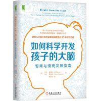 如何科学开发孩子的大脑:智商与情商发展指南 机械工业出版社