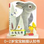 亮丽精美触摸书:小兔比利