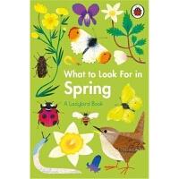 预售 What to Look For in Spring 预计九月发货