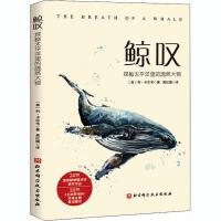 鲸叹 北京科学技术出版社