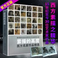 素描的高度 30名西方大师素描作品达芬奇拉斐尔罗丹席勒凡高 临摹范画本学生教材素材书人体物头像肖像静物素描美术绘画艺术