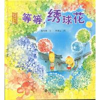 北京记忆・皇城童话《等等,绣球花》