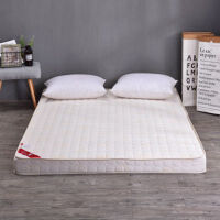 加厚床垫1.5m1.8m床褥子双人榻榻米垫被宿舍1.2米席梦思海绵垫子定制