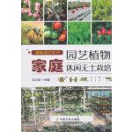 家庭园艺植物休闲无土栽培
