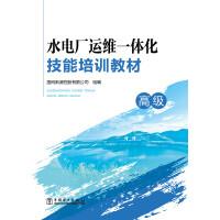 水电厂运维一体化技能培训教材(高级)